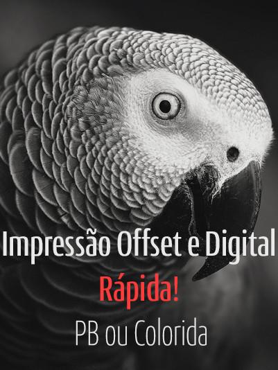 Impressão offset e digital rápida